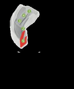 Gamme Myosa® For Teeth Grinders